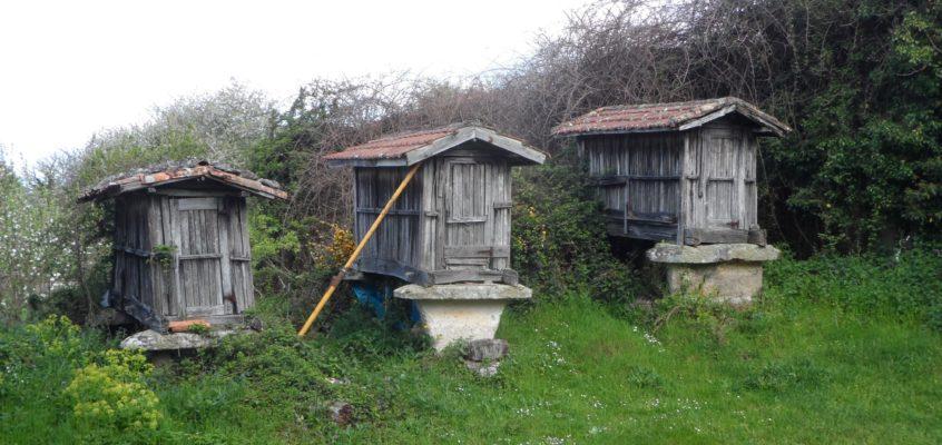 Conxunto de hórreos da aira dos Trizós en Zarracós