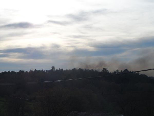 Un incendio forestal devasta o piñeiral de Oxén en pleno mes de decembro