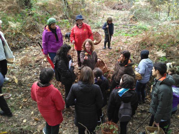 Unha tarde de outono redescubrindo o apaixonante mundo dos cogumelos