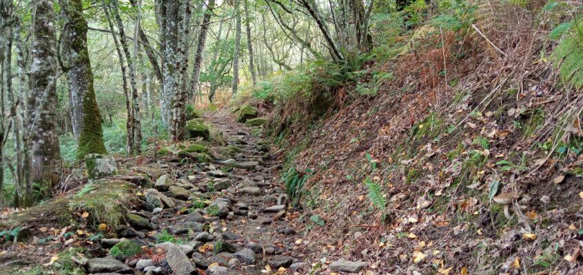 Camiño dende o depósito do Casal á Fontela da Fraga